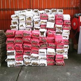 sacos de leña eucaliptus